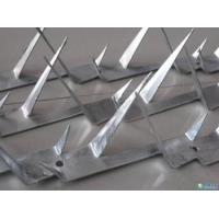 Spike Wire,New type fence top for protecting, Wall spike wires,1m-1.5m length