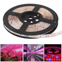 Quality Waterproof 5050 Flexible LED Grow Strip Light Red and Blue 5:1 Aquarium Greenhouse Hydroponic Plant Growing Tape Lamp for sale
