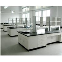 Quality 16mm/19mm Epoxy Resin Worktop Wooden Laboratory Furniture With Storage Cabinet for sale