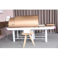 Buy cheap Ovary Care Infrared Sauna Bed / Far Infrared Dome With 5 - 60 Minutes Time from wholesalers