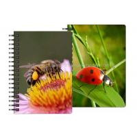 Buy cheap 0.6mm PET Material 3D Lenticular Notebook For Office Stationery product