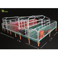 Pig Breeding Equipment Galvanized Pig Limit Pen Elevated Pig Farrowing Crate