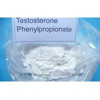 Buy cheap Testosterone Anabolic Steroid Testosterone phenylpropionate Strength For Muscles product