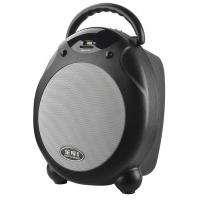Outdoor Active Plastic Trolley Speaker Box With Bluetooth , Remote Control