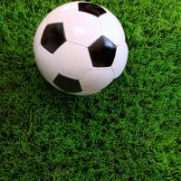Buy cheap Fields Artificial Grass Olive Green Bright Shinning With Strong UV Stable Yarns product
