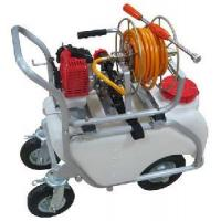 China Gas Powered Garden Sprayer (TF-650R) on sale