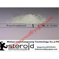 Buy cheap Oral Turinabol Steroid Powder 4-Chlorodehydromethyltestosterone for Muscle Building product