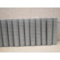 Buy cheap Welded Wire Mesh for Agriculture (ZSTEEL-001) product