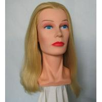 Buy cheap training heads Mannequin head,Model head, product