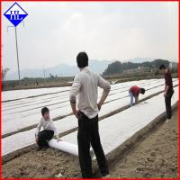 Quality UV Protection Agriculture Non Woven Fabric , Greenhouse Plant Protection Cover Cloth for sale