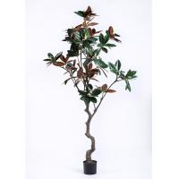 Buy cheap Lovely  Artificial Plants And Trees Magnolia Tree Regal In Stature Command Attention product