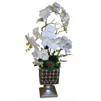 Buy cheap Potted Silk Orchids for Sale from wholesalers