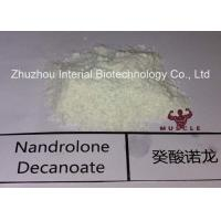 Buy cheap Injectable Nandrolone Decanoate Steroid White Powder Deca for Muscle Gaining with Safe Shipping product