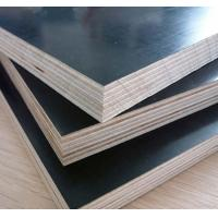 China Finger Joint Filmed Plywood for Construction, Concrete Plywood 18mm on sale