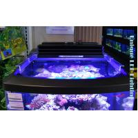 China programmable LED aquarium light on sale