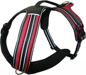 Buy cheap Two Leash Attachment Rings soft No Pull Nylon Dog Harness product