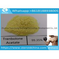 Buy cheap Trenbolone Acetate Injection Trenbolone Powder For Lean Muscle , CAS 10161-34-9 from wholesalers