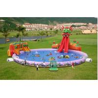 Buy cheap Fantasy Dragon Slide Pool Water Park For Kids product