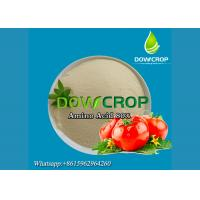 China Amino Acid Powder 80% - PLANT SOURCE-Without CL on sale