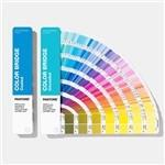 Buy cheap Solid Coated / Uncoated Paper Paint Color Cards 2019 Pantone GP6102A Color Bridge Guide Set product