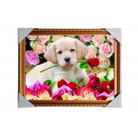 Buy cheap Customised PET Pictures 3D Lenticular Printing Service Stock 3D Image PS Frame product