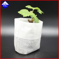 Buy cheap Degradable PP Agriculture Non Woven Fabric For Plant / Fruit Cover Bags Material product