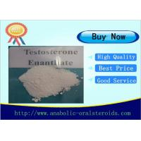 Buy cheap Bodybuilder Raw Testosterone Enanthate Steroid Powder  CAS 315-37-7 from wholesalers