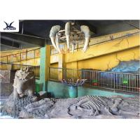Buy cheap Indoor Museum Life Size Dinosaur Replicas , Sunproof Dinosaur Skeleton Replica product