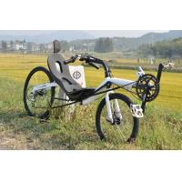 China Recumbent Bicycle on sale