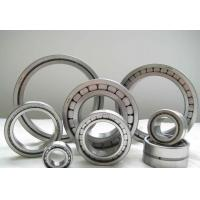 Buy cheap SL183005 cylindrical roller bearing,25x47x16 mm no cage product