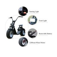 Buy cheap EcoRider Electric Scooter, 1200w Electric Scooters  with removable battery product