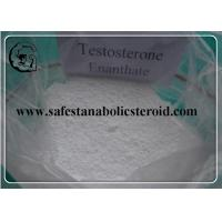 China Testosterone Steroid Hormone Powder Testosterone Enanthate For Fat Loss & Muscle Gain on sale