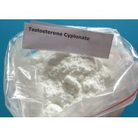 Raw Hormone white Powder CAS No.:58-20-8 Testosterone Cypionate  for Testosterone Cypionate Injection and Pill
