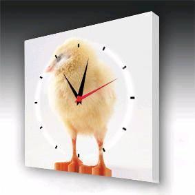China Fashion  Wall Clock (WA2009) on sale