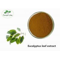 Buy cheap Health - Care Plant Extract Powder Eucalyptus Leaf P.E. Balance The Skin from wholesalers