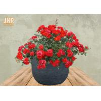 Buy cheap Weathered Garden Pots Clay Flower Pots Resin Outdoor Plant Pots Gray Color from wholesalers