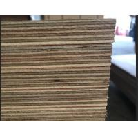 Buy cheap Marine Grade Commercial Plywood Okoume Face / Back With Phenolic Glue product