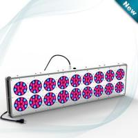 China Blue Red Hydroponics LED Grow Light 630nm / 460nm 612W~644W D C 32 ~ 45V , LED Plant Grow Lamp on sale