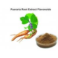 China Pueraria Natural Plant Extracts 40% Flavonoids for Hangover breast enhancement / postponed female menopause on sale