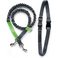 Buy cheap Lightweight Reflective Nylon Dog Lead , Bungee Dog Leash Dog Accessories product