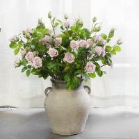 Buy cheap 5 Heads England Roses from wholesalers