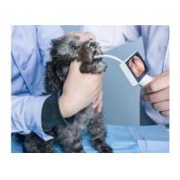 Buy cheap Health Care Handheld ENT Camera Digital Video Otoscope To Find Disease In Ear from wholesalers
