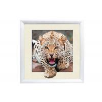 Buy cheap 5D House decorative Picture 3D Lenticular Printing Service CMYK Offset Printing product