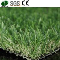 Buy cheap Plastic Grass For Wall Garden Artificial product