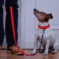 Buy cheap Neoprene Padding Reflective Light Up Dog Lead Safe For Night Walking product