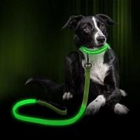 Buy cheap Customized Color LED Dog Leash , Glow In The Dark Dog Leash Light Up At Night from wholesalers