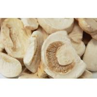 China Natural Healthy Freeze Dried Food Fungus Mushroom Agaricus Freeze Drying Slice on sale