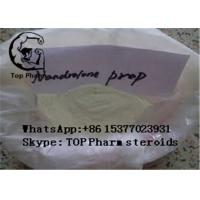 Buy cheap 99% purity Nandrolone propionate CAS 7207-92-3 gain muscles nandrolone series product