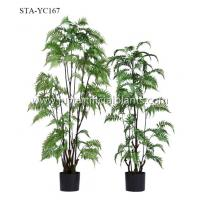 Buy cheap Stunning Artificial Fern Tree Realistic Timeless Beauty Color Change Leaves product