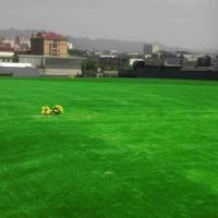 Buy cheap Single Green Pet Friendly Fake Lawn / Outdoor Artificial Grass For Dogs product